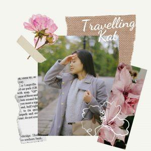 travelling-kat